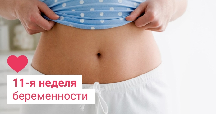 11 неделя беременности