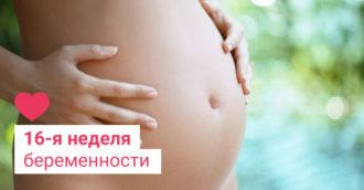 16 неделя беременности