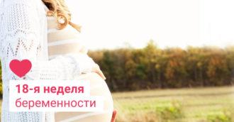 18 неделя беременности