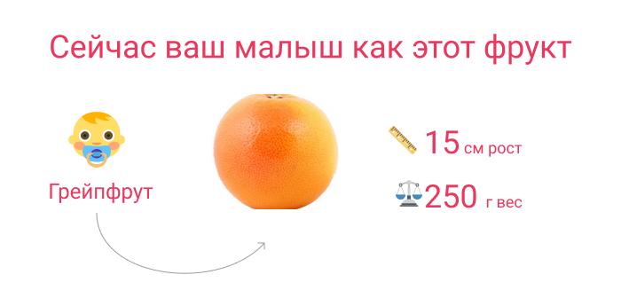 малыш как грейпфрут