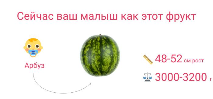 плод как арбуз