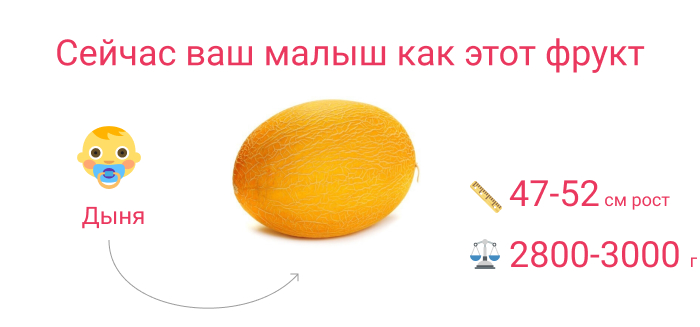 плод на 37 неделе беременности