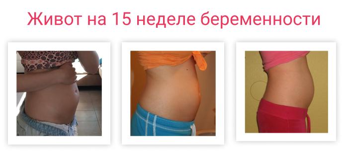 живот на 15 неделе беременности