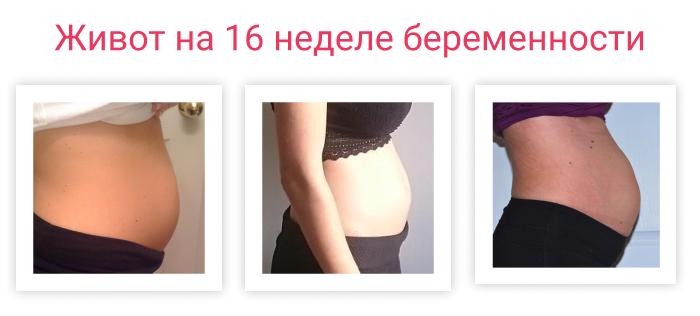 живот на 16 неделе беременности