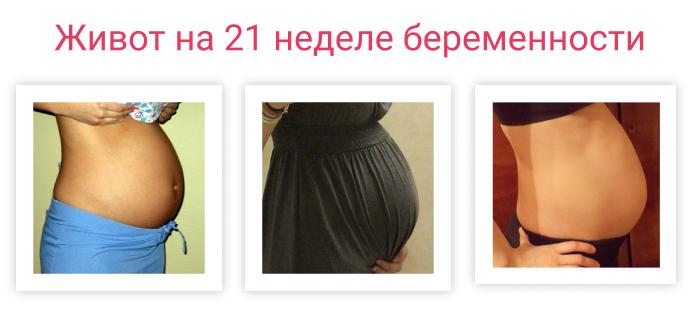 живот на 21 неделе беременности